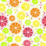 Citrus Seamless Pattern. Seamless pattern with citrus design: orange, lemon, lime pink grapefruit and blood orange, vector illustration Royalty Free Stock Images