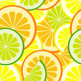 Citrus seamless pattern Royalty Free Stock Photos