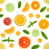 Citrus seamless pattern isolated on white background. Stock Photography