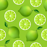 Citrus seamless pattern with limes Royalty Free Stock Image