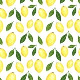 Citrus seamless pattern made of lemons. Hand drawn watercolor illustration royalty free illustration