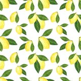 Citrus seamless pattern made of lemons. Hand drawn watercolor illustration royalty free illustration