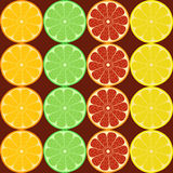Citrus . Seamless pattern. Slices of citrus fruits on a brown background . Seamless pattern vector illustration