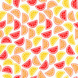 Citrus Seamless Pattern. Slices Of Tropical Fruits Stock Photography