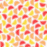 Citrus seamless pattern. Slices of tropical fruits Stock Photo