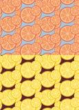 Citrus seamless patterns Royalty Free Stock Photos