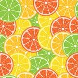 citrus seamless vektor royaltyfri illustrationer