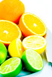 Citrus selection Royalty Free Stock Photo