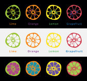 Citrus. Set of icons depicting varieties of citrus fruits Royalty Free Stock Image