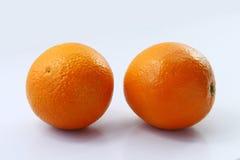 Citrus sinensis Royalty-vrije Stock Fotografie