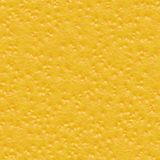 Citrus Skin. Seamless Texture Tile Stock Images