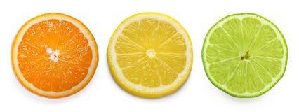 Citrus skiva, apelsin, citron, limefrukt som isoleras på vit bakgrund arkivfoto