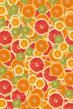 Citrus slice background. Frame made of miscellaneous citrus slices. See more citrus slice images in this series in my portfolio stock image