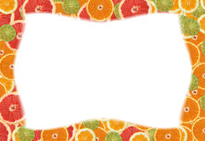 Citrus slice frame. Frame made of miscellaneous citrus slices. See more citrus slice images in this series in my portfolio royalty free stock image