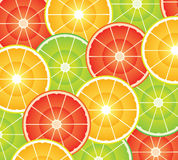 Citrus slices. Vector citrus slices of different shapes and colors Royalty Free Stock Photo