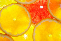 Citrus slices. Orange and grapefruit background, backlit Royalty Free Stock Photo