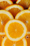 Citrus slices. Royalty Free Stock Photos