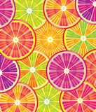 Citrus slices Stock Photography