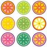 Citrus slices Stock Images