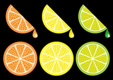 Citrus_slices Royalty Free Stock Photos