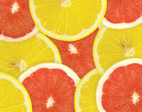 Citrus slices. Abstract background of citrus slices. Closeup. Studio photography Royalty Free Stock Image