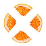 Citrus Slices Stock Image