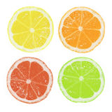 Citrus Slices Royalty Free Stock Images