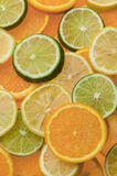 Citrus Slices. Orange, Lime and Lemon Slices Stock Image