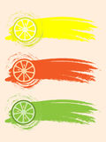 Citrus slices. In an abstract grunge style Royalty Free Stock Photography