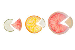 Citrus slices with back light Royalty Free Stock Photography