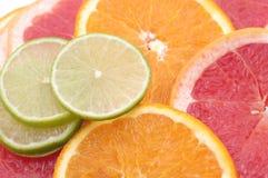 Citrus slices background. Orange, lime, grapefruit Stock Image