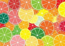 Citrus slices background. Citrus slices multicolored background. Vector illustration Stock Photo