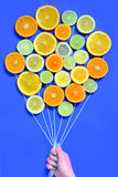 Citrus  slices fruits concept Stock Images