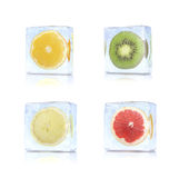 Citrus slices in the ice cubes Stock Image