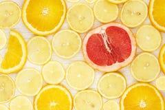 Citrus slices Stock Photos