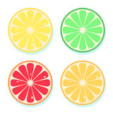 Citrus slices of lemon, orange, lime and grapefruit. Vector illustration. Fresh fruits icons set isolated on white background Stock Photos
