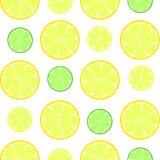 Citrus slices seamless vector pattern. Citrus lemon slices seamless vector pattern Stock Image