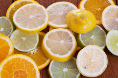Citrus Slices on Table. Lemon, Lime and Orange Slices on a Table Royalty Free Stock Photography