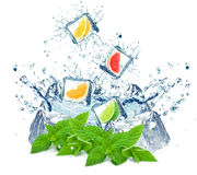Citrus splash Stock Photography