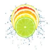 Citrus splash Stock Image