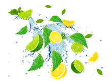 Citrus splash Stock Image
