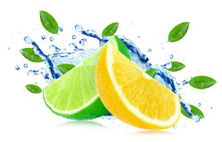 Citrus splash Royalty Free Stock Images