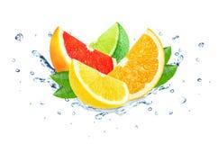 Citrus splash water Royalty Free Stock Image