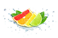 Citrus splash water Royalty Free Stock Images