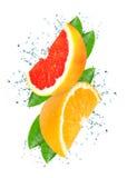 Citrus splash water Royalty Free Stock Photos