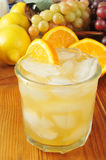 Citrus Spritzer Stock Photos