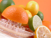 Citrus squeezer Stock Photography