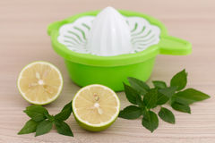 Citrus squeezer with lemon and basil Stock Image