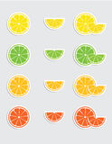 Citrus sticker collection Stock Photo