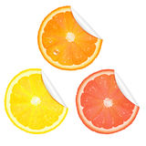 Citrus Stickers Stock Photography